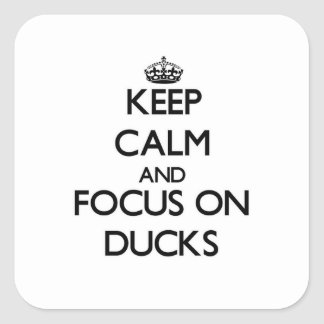 Keep Calm and focus on Ducks Square Sticker