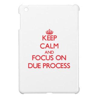 Keep Calm and focus on Due Process iPad Mini Cover