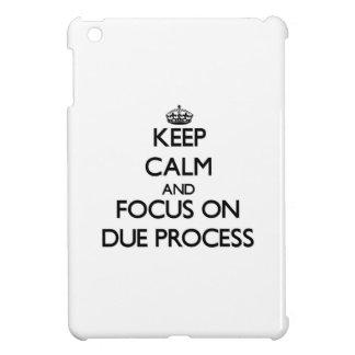 Keep Calm and focus on Due Process iPad Mini Case