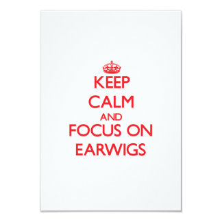 Keep Calm and focus on Earwigs 3.5x5 Paper Invitation Card