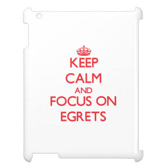Keep calm and focus on Egrets Case For The iPad 2 3 4