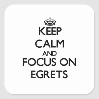 Keep calm and focus on Egrets Stickers