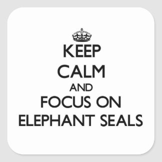 Keep calm and focus on Elephant Seals Square Sticker