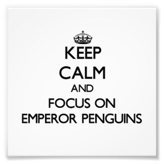 Keep calm and focus on Emperor Penguins Photo Print