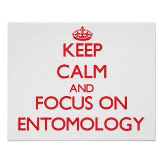 Keep Calm and focus on ENTOMOLOGY Poster