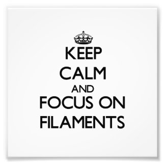 Keep Calm and focus on Filaments Photograph