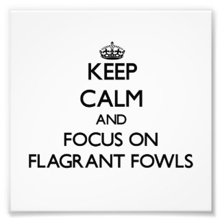 Keep Calm and focus on Flagrant Fowls Photo