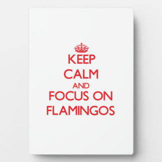 Keep Calm and focus on Flamingos Display Plaque