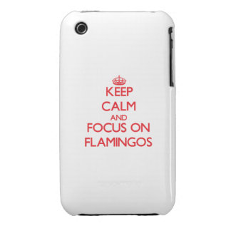 Keep calm and focus on Flamingos iPhone 3 Case