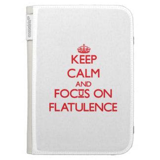 Keep Calm and focus on Flatulence Kindle 3 Cover