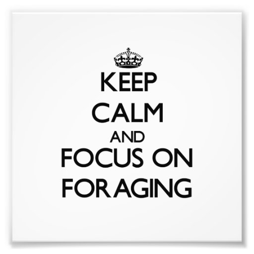 Keep Calm and focus on Foraging Art Photo