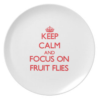 Keep Calm and focus on Fruit Flies Plates