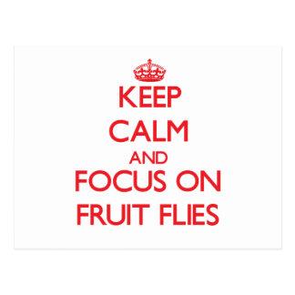 Keep Calm and focus on Fruit Flies Postcards