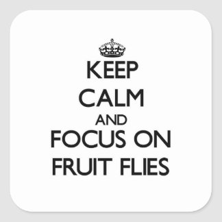 Keep Calm and focus on Fruit Flies Stickers