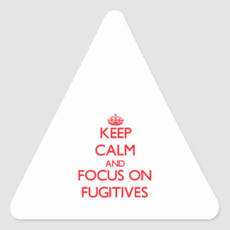 Keep Calm and focus on Fugitives Triangle Sticker