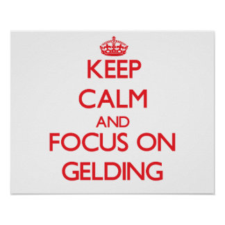 Keep Calm and focus on Gelding Poster