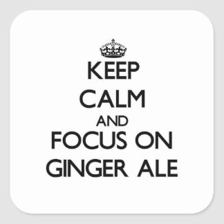 Keep Calm and focus on Ginger Ale Stickers