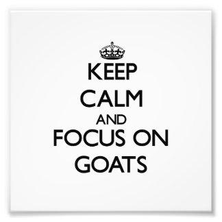 Keep calm and focus on Goats Photo Print