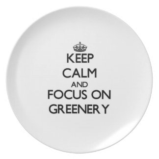 Keep Calm and focus on Greenery Party Plate