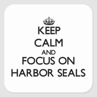 Keep calm and focus on Harbor Seals Square Sticker