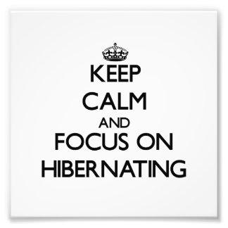 Keep Calm and focus on Hibernating Photograph