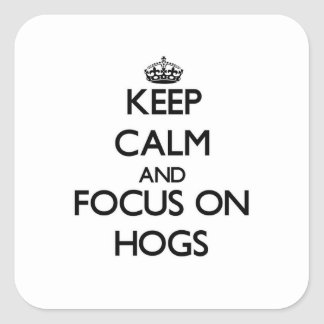 Keep Calm and focus on Hogs Square Sticker