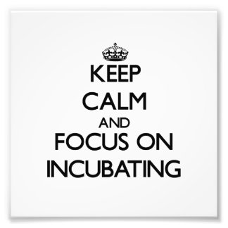 Keep Calm and focus on Incubating Photographic Print