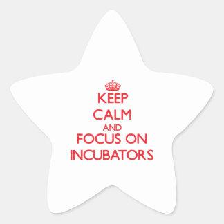Keep Calm and focus on Incubators Star Sticker