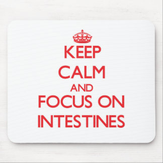 Keep Calm and focus on Intestines Mouse Pad