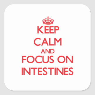 Keep Calm and focus on Intestines Square Sticker