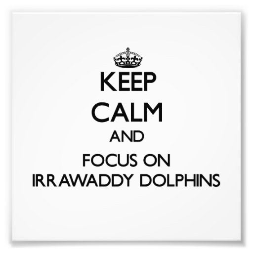 Keep calm and focus on Irrawaddy Dolphins Photo Art