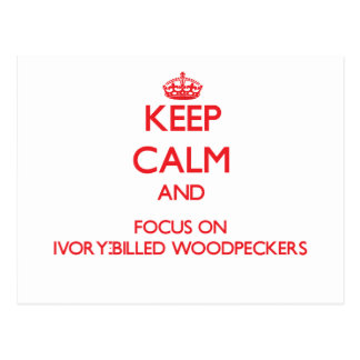 Keep calm and focus on Ivory-Billed Woodpeckers Postcard