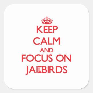 Keep Calm and focus on Jailbirds Square Sticker