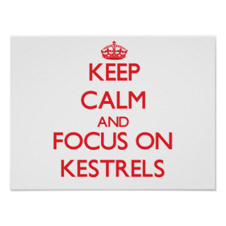 Keep calm and focus on Kestrels Posters