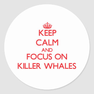 Keep calm and focus on Killer Whales Classic Round Sticker