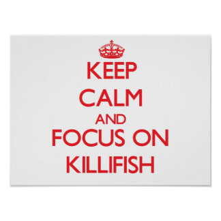 Keep calm and focus on Killifish Posters