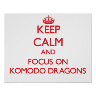 Keep calm and focus on Komodo Dragons Poster