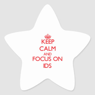 Keep Calm and focus on LDS Star Sticker