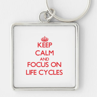 Keep Calm and focus on Life Cycles Keychain