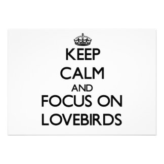 Keep Calm and focus on Lovebirds Custom Invites