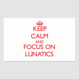 Keep Calm and focus on Lunatics Rectangle Sticker