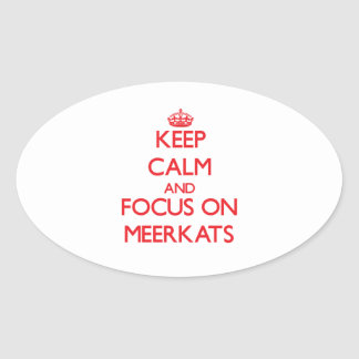 Keep calm and focus on Meerkats Stickers