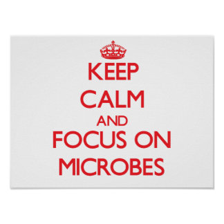 Keep Calm and focus on Microbes Posters