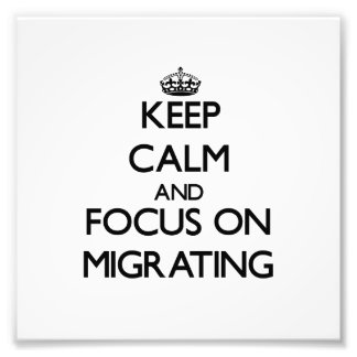 Keep Calm and focus on Migrating Photo Art