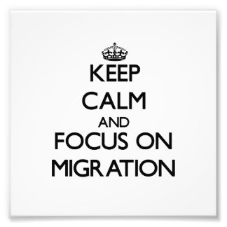 Keep Calm and focus on Migration Photographic Print