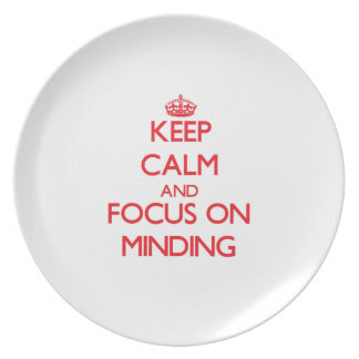 Keep Calm and focus on Minding Party Plates