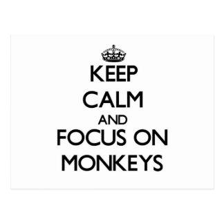 Keep Calm and focus on Monkeys Postcard