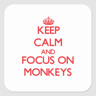 Keep Calm and focus on Monkeys Square Stickers