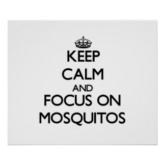 Keep Calm and focus on Mosquitos Poster