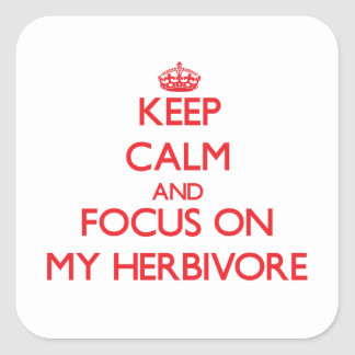 Keep Calm and focus on My Herbivore Square Sticker